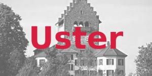 Foto der Burg von Uster
